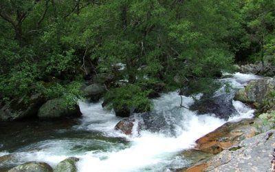 Camino de los Molinos y Yacimiento Visigodo (San Martín)