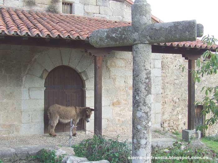 iglesia de casas del conde