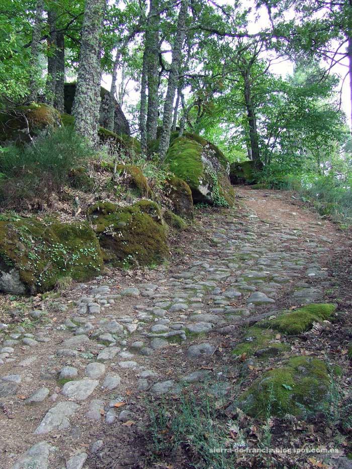 camino empedrado en las casas del conde