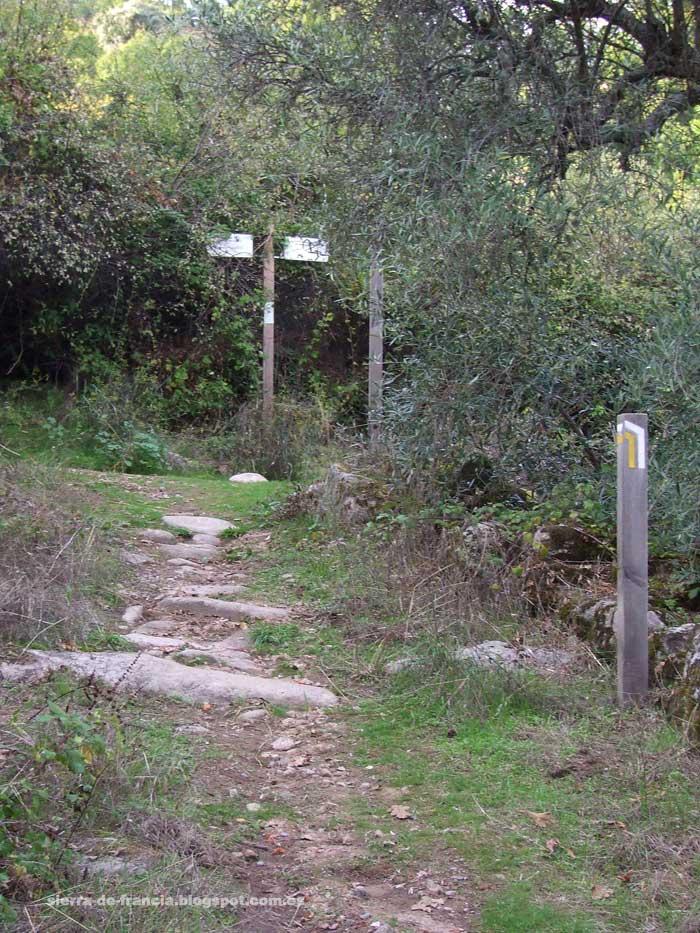 cruce de senderos