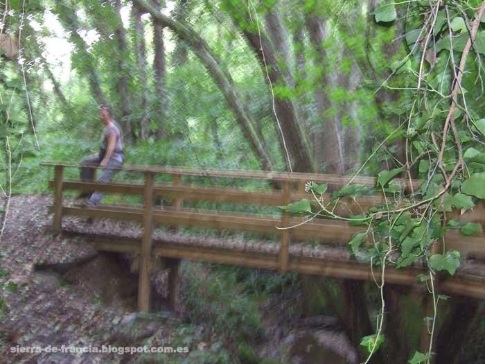 puente del camino del asentadero