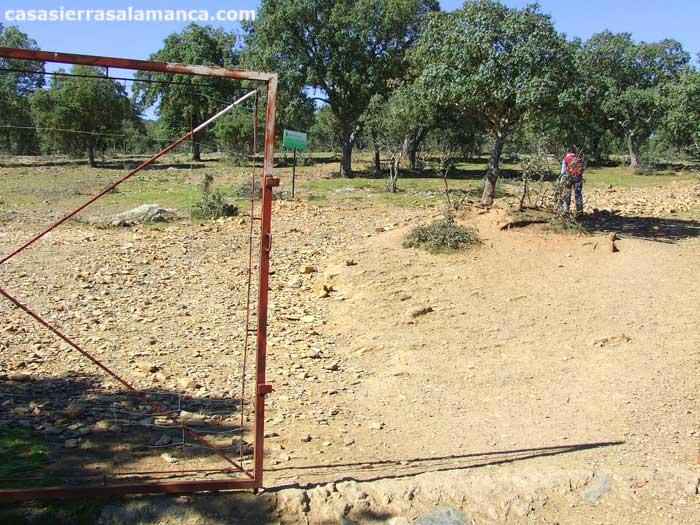 puerta de ganado en el monte