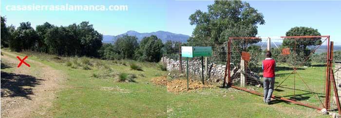 puerta de ganado cerca del zarzoso