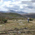El camino de las raíces-La Alberca