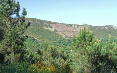 Villanueva del Conde – La Buitrera de Garcibuey