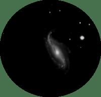 NGC613