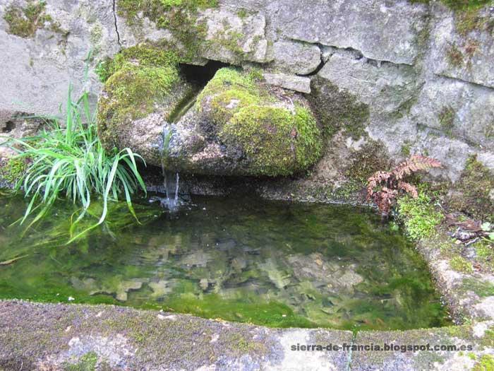 El camino del agua -fuente