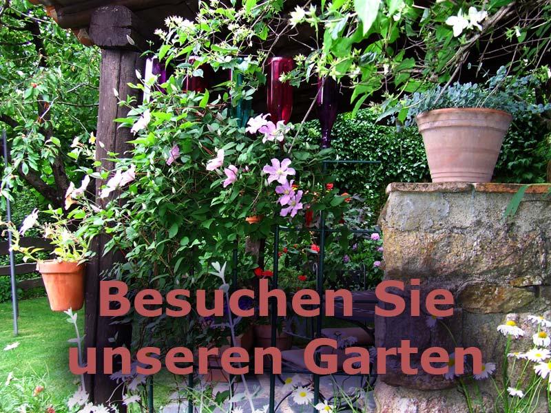 Garten von die Ferienhäuser