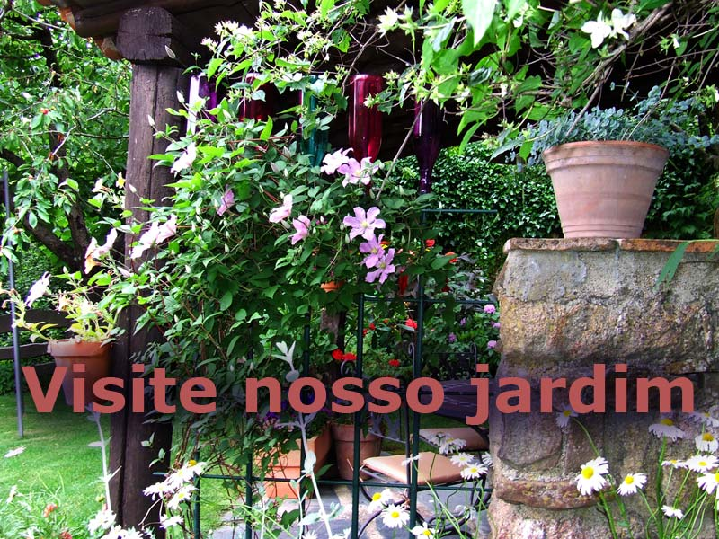 flores no jardim das casas