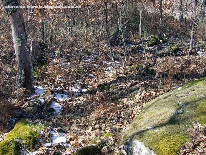 la legoriza: restos y piedras del poblado visigodo