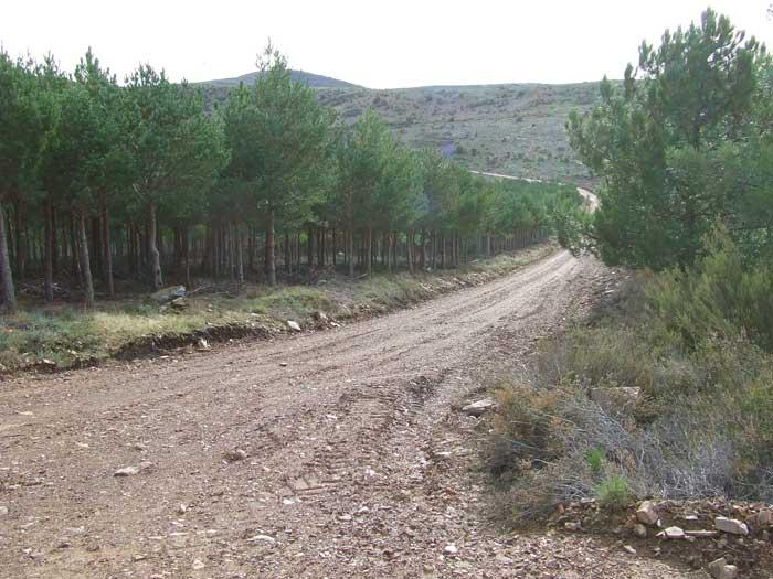 pista hacia el castillo viejo de valero
