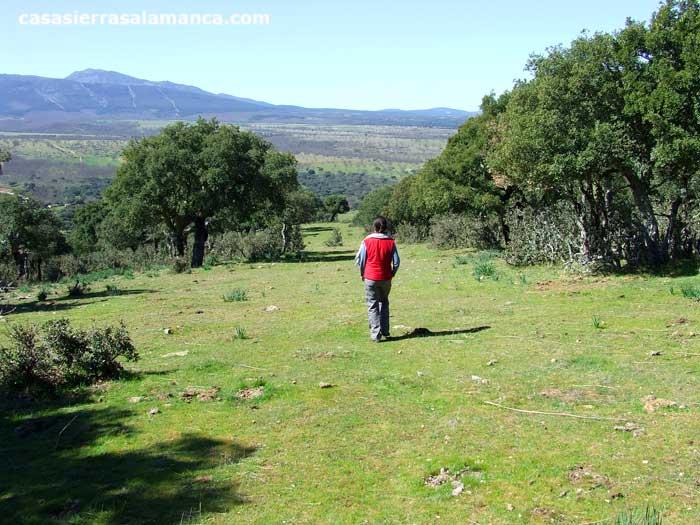 caminando en el camino de el Zarzoso