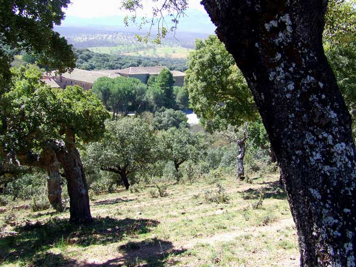 Aldeanueva de la Sierra – Camino de El Zarzoso