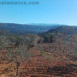 Ruta de los 3 ríos – Sotoserrano