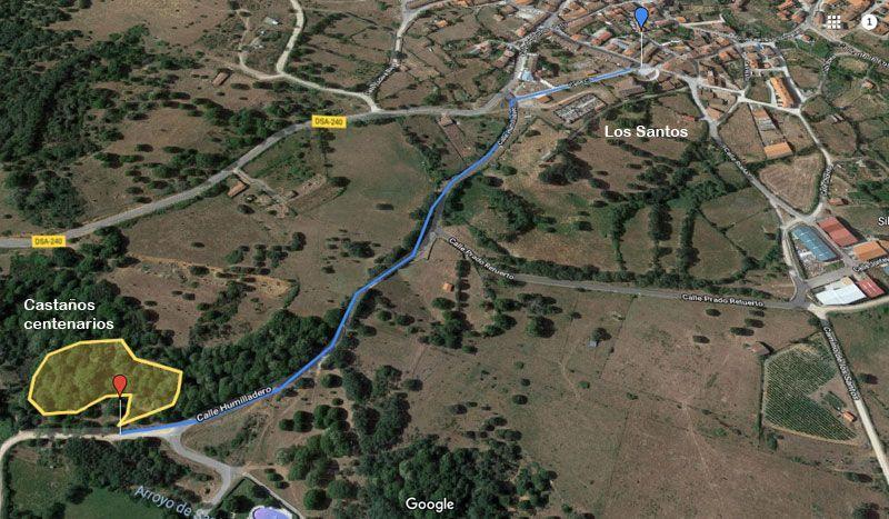 mapa de la ruta castaños centenarios de los santos