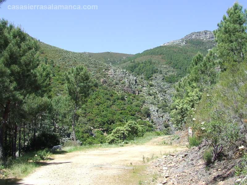 Valle de belen cerca de herguijuela