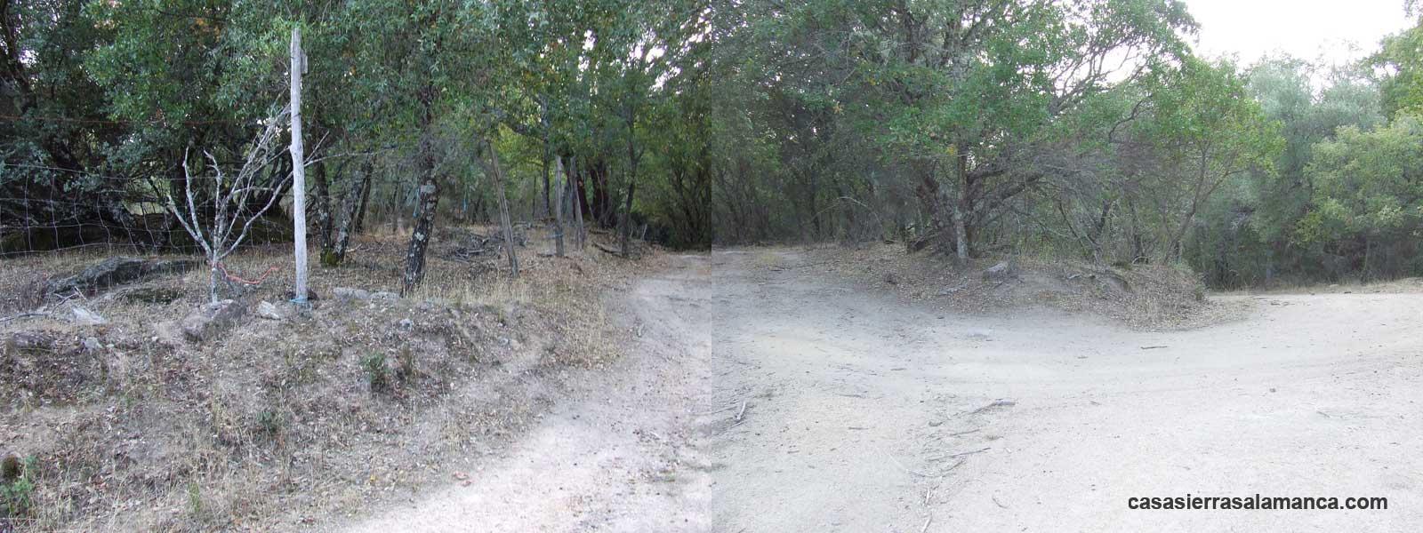 antiguo camino hacia el puente de Pinedas