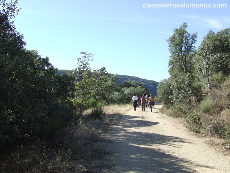 ruta miranda del castañar río alagón