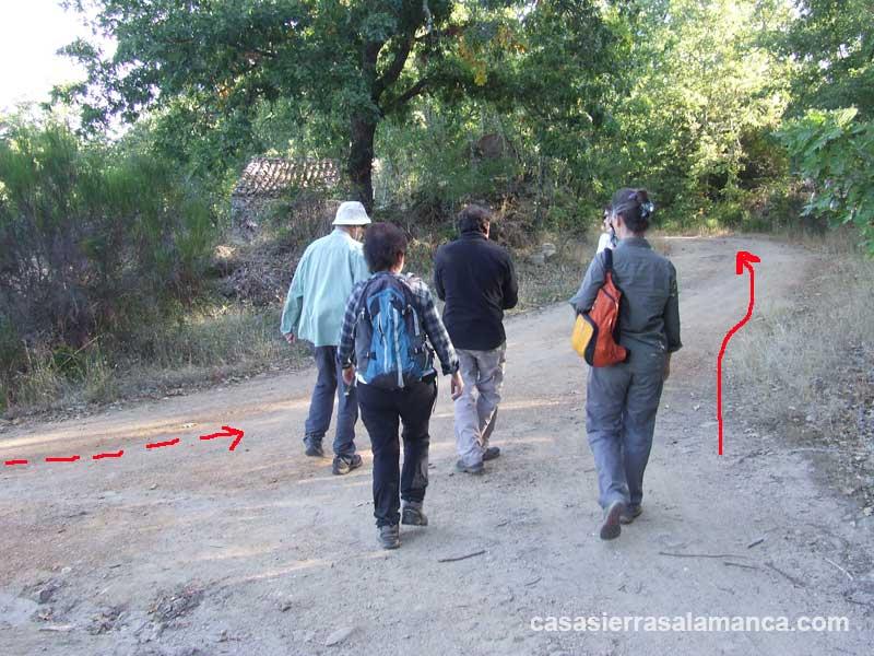 ruta miranda del castañar río alagón, desvio